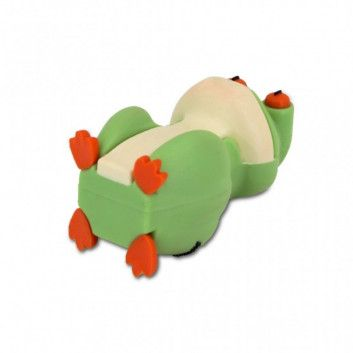 Cle USB Grenouille  - 6
