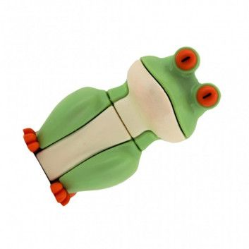 Cle USB Grenouille  - 10